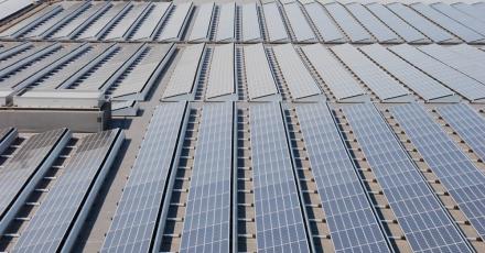 7.500 zonnepanelen op Waalwijks dak