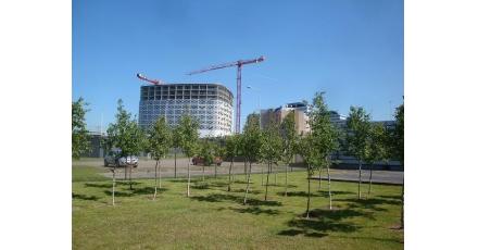 Betere luchtkwaliteit door dakbedekking Hiltonhotel Schiphol
