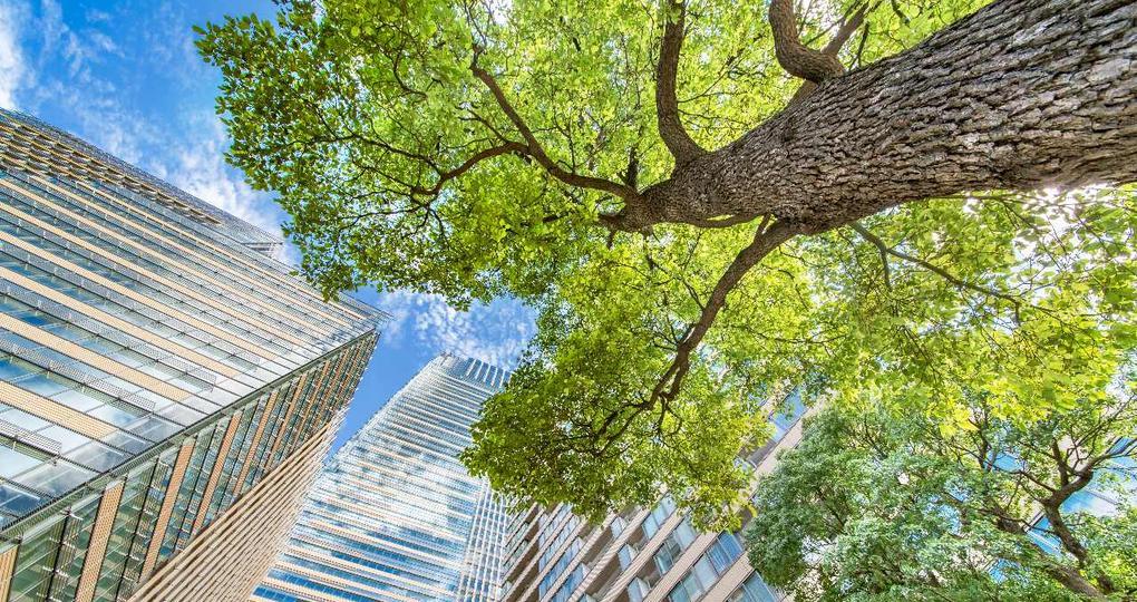 De invloed van covid-19 op duurzame doelstellingen en investeringen