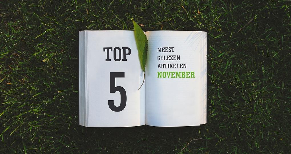 De top 5 artikelen van november 2018