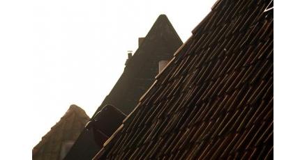 Congres belicht kansen verduurzaming hellende dak