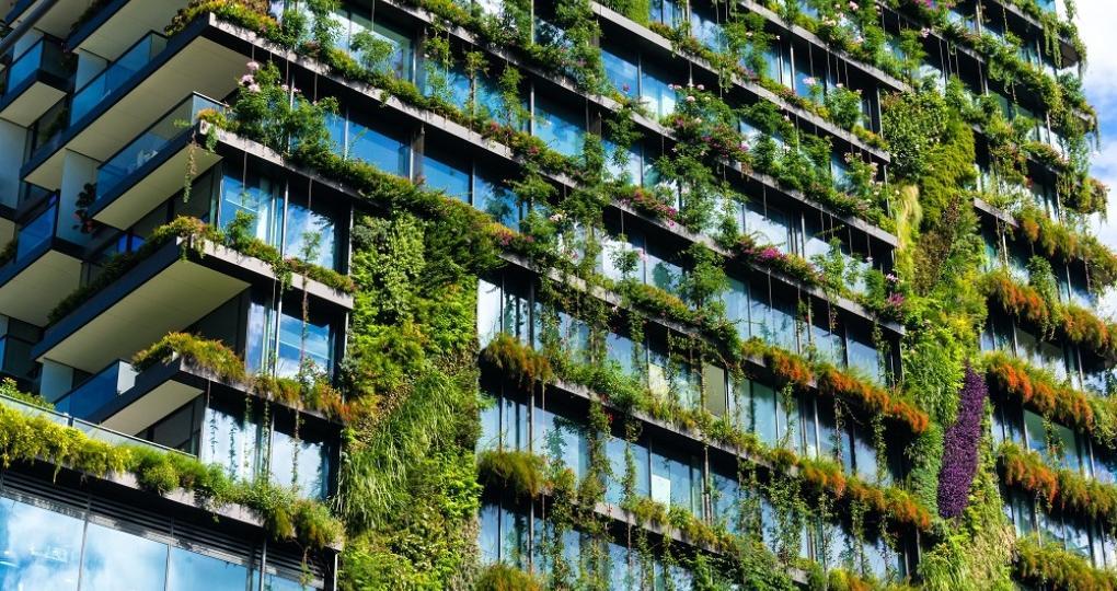'Duurzaamheid: vaker beleden met de mond dan met de portemonnee'