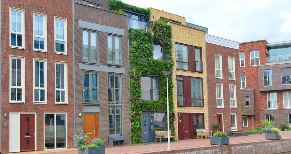 Duurzame groene gevel in Delft weet alle ogen op zich gericht