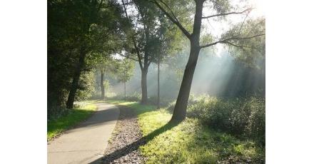 Eindhoven krijgt innovatief fietspad