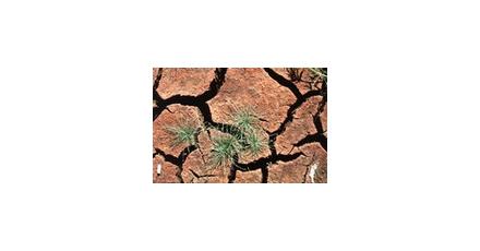 Filmpje: Duurzaam bodemgebruik 2008-2058