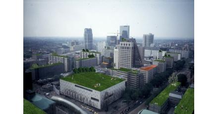 Groene daken populair onder architecten