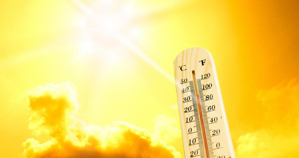 Hoe pakken corporaties de klimaatadaptatie en hittestress aan?