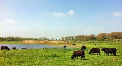 'Keramische industrie brengt 100% circulair Nederland dichterbij'