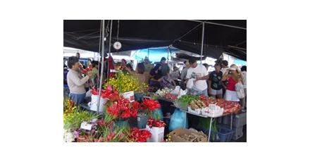 Marktplaats voor duurzaam inkopen