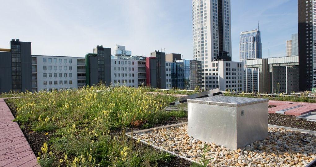Multifunctionele daken – flexibele oplossing voor klimaatadaptieve dakconstructies