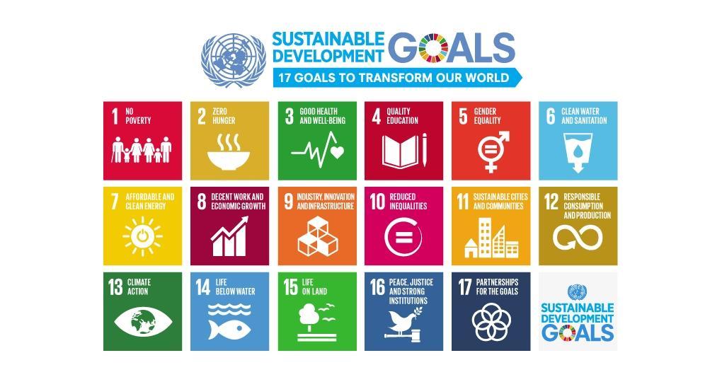 'Neem de lead en maak een SDG-agenda'