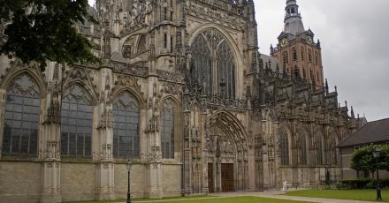 Nijmegen of Den Bosch: Europees groene hoofdstad 2017?