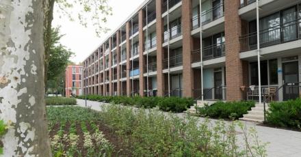 Onderzoek naar gasloos wonen in Rotterdam