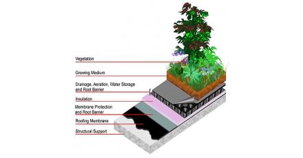 Ook subsidie groene daken in Den Haag?