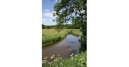 Provincie wil extreem duurzame voorbeeldwijk voor Drenthe