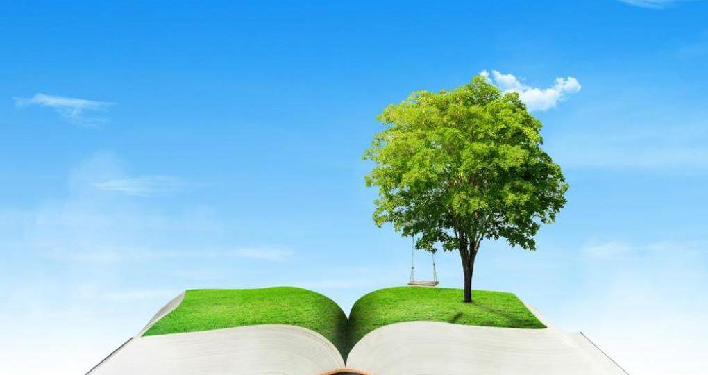 Schrijf mee aan het Woordenboek Natuurinclusief Bouwen