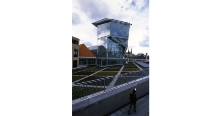 Stadsdelen Amsterdam ontdekken groene daken