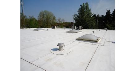 Subsidiemogelijkheid voor plantaardige dakbaan