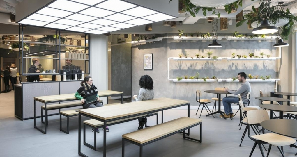 Uitbreiding Rotterdamse bedrijven community is 'urban jungle'