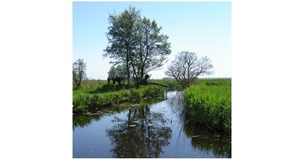 Veel discussie over de toekomst van het Nederlandse landschap