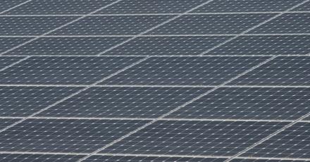 100 voetbalvelden aan zonnepanelen op daken melkveebedrijven