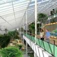 Villa Flora, drie jaar wordingsgeschiedenis