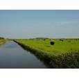 Proeftuin Texel op koers naar energieneutraal