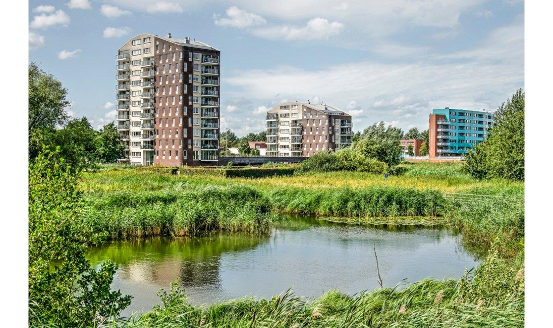 Natuurinclusief Bouwen op Building Holland